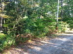 Parcel #7 - Thomas Pond Ter. - 102+/- Acres