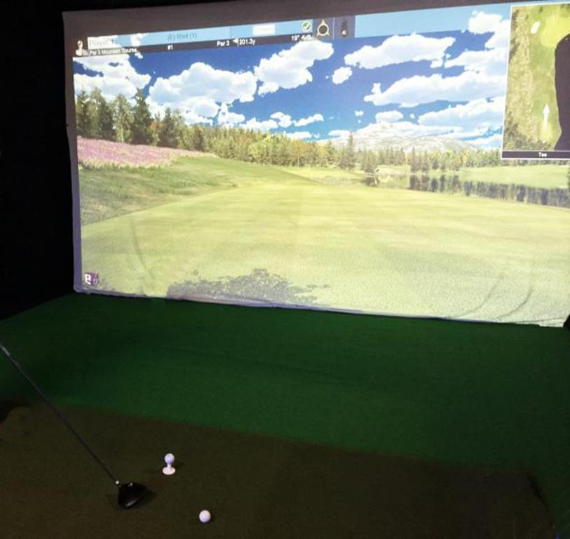 PUBLIC TIMED ONLINE AUCTION GOLF SIMULATOR, GOLDEN TEE ARCADE MACHINE Auction