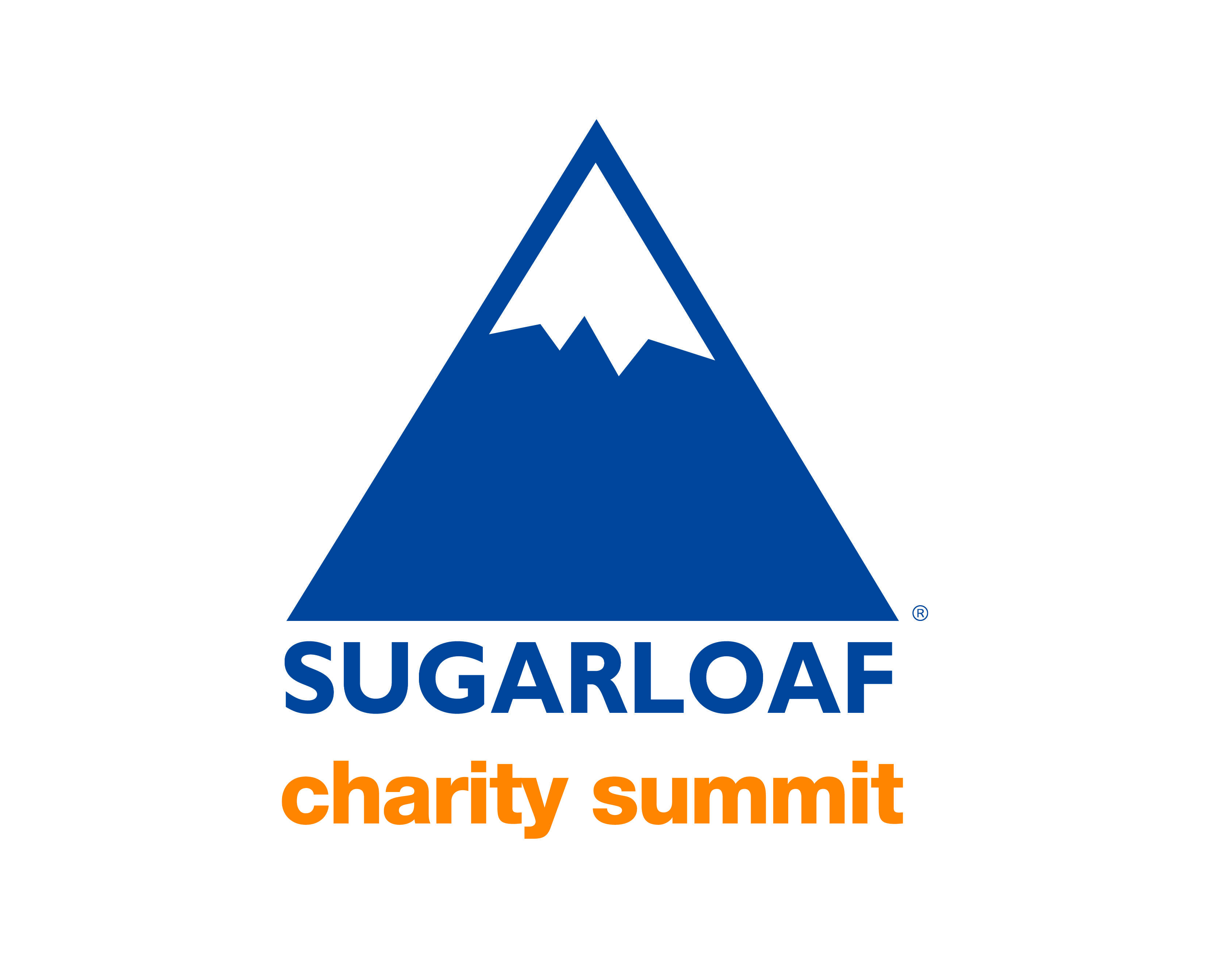 TIMED ONLINE AUCTION SUGARLOAF CHARITY SUMMIT  Auction