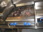 RESTAURANT EQUIPMENT AUCTION - ICE CREAM EQUIPMENT - REFRIGERATION - FURNITURE - COLLECTIBLES Auction Photo