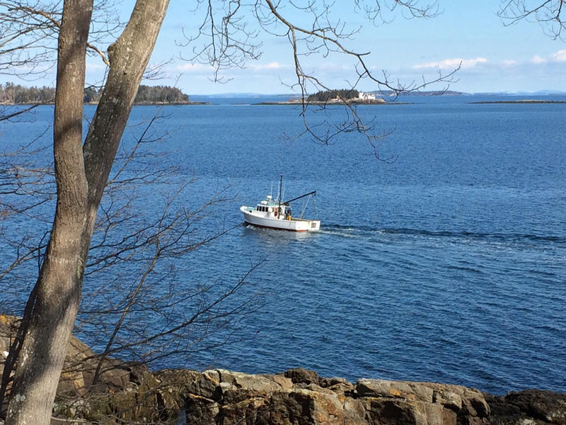Oceanfront Home - 10.64+/- Acres - 500'+/- Deepwater Frontage on Penobscot Bay Auction