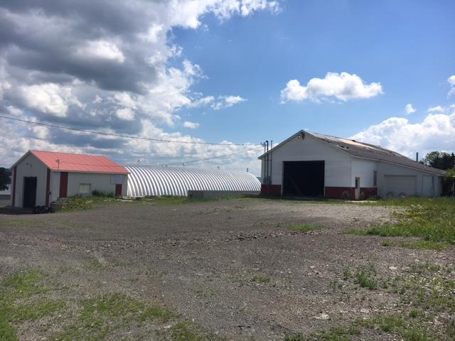 206+/- Acres Farmland  - Potato Storages - Shop Buildings Auction