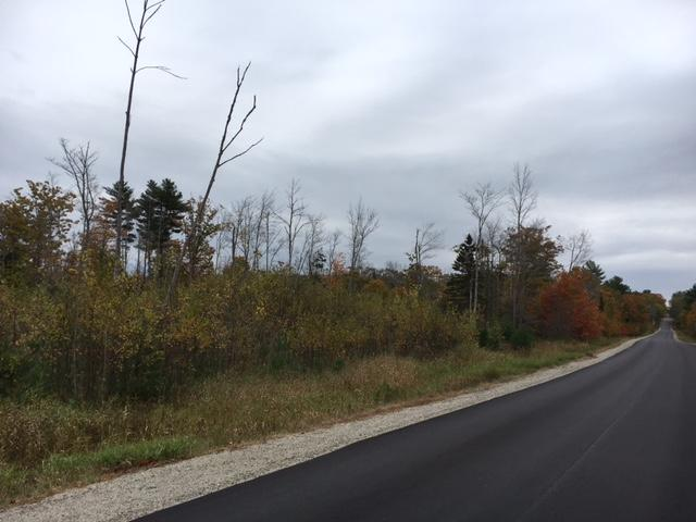 85+/- Acres - (4) Parcels - Bucksport, Maine Auction